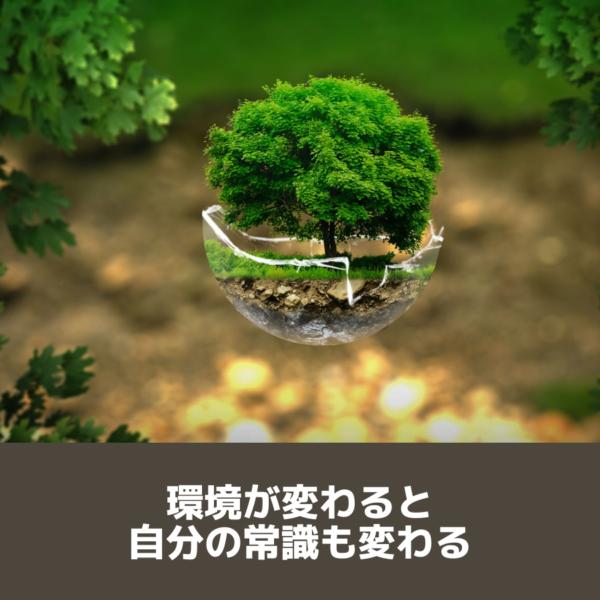 個別 武蔵関 塾