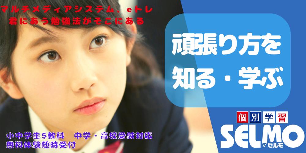 塾 武蔵関 関町 個別 定期テスト 中学生